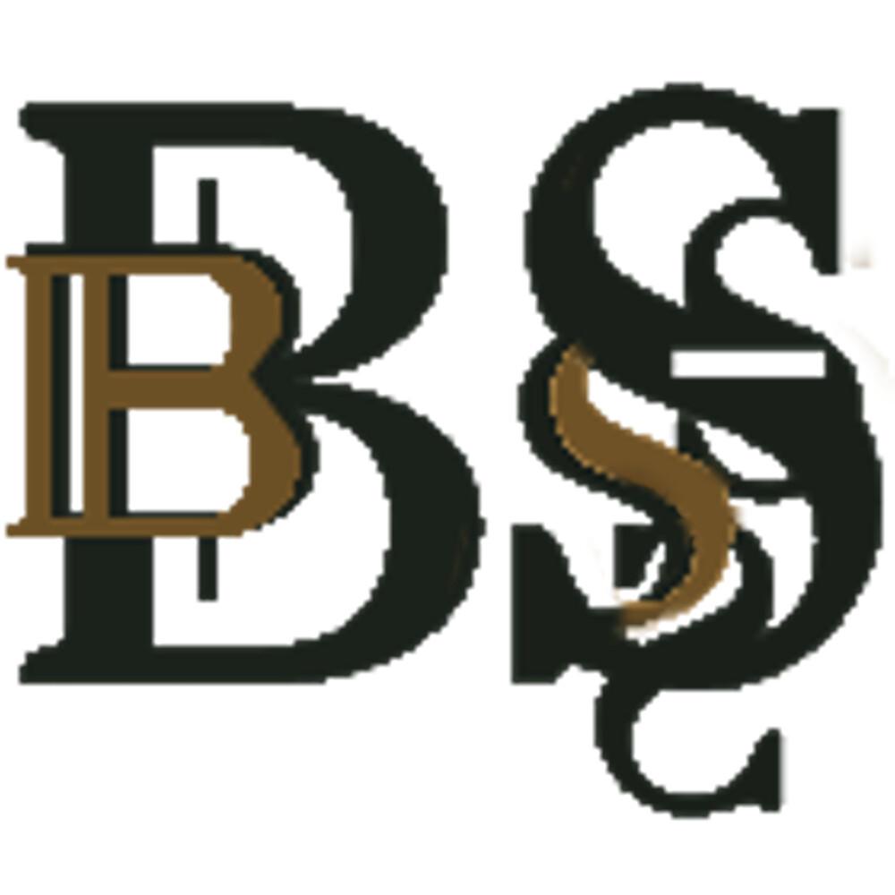 Barokspiegel Logo