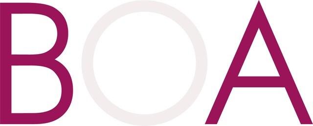 BOA Skin Care Logo