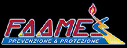 Faames Logo
