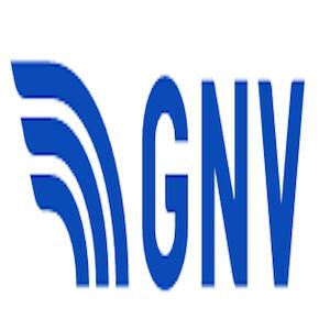 Gnv It Logo